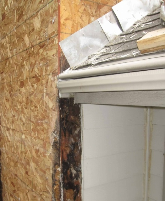 In particular, we are used to tracking back the source of major interior  mold damage to a small leak in the roof. A small leak that goes undetected  for a ...