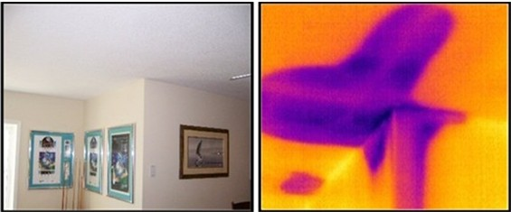 A thermal imaging camera detects an active water leak in the ceiling of this home